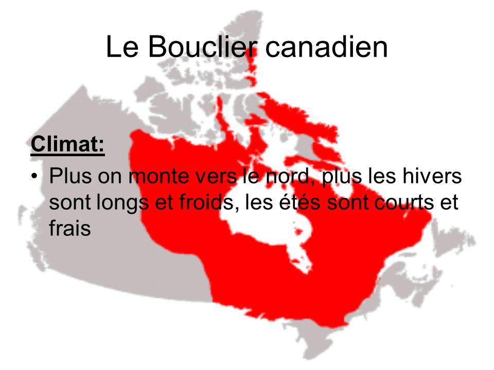 Le Bouclier canadien Topographie: Couvre plus de la moitié du Canada Composé dune plateforme de roche du Labrador vers les plaines à louest et au T.N.-O/Nunavut vers le nord Entrelacements complexe de rivières, de lacs, de marécages, et de tourbières (v) Altitude de 100 m, au nord, et 500 m au sud au dessus de la mer Plaines couvertes dargile (Baie James, Hudson)