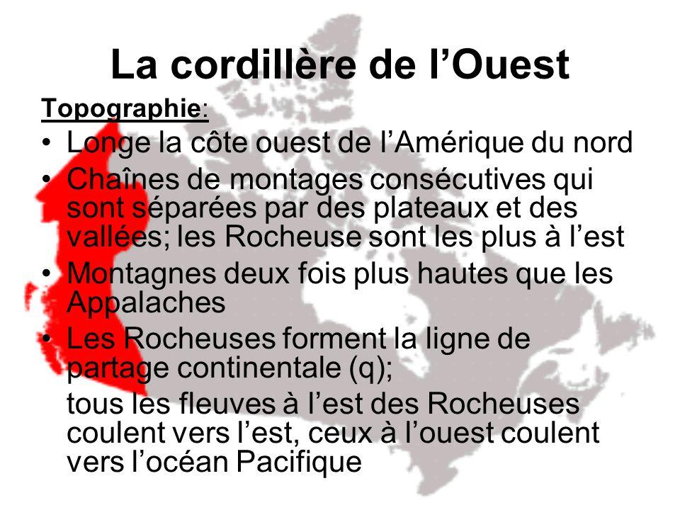 Le Bouclier canadien Végétation: Presque entièrement couvert de la forêt boréale (épinette, pins, sapin - poussent biens dans un sol sablonneux) Convi