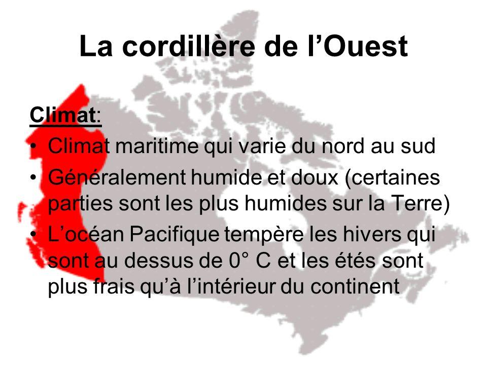 La cordillère de lOuest Topographie: Longe la côte ouest de lAmérique du nord Chaînes de montages consécutives qui sont séparées par des plateaux et d