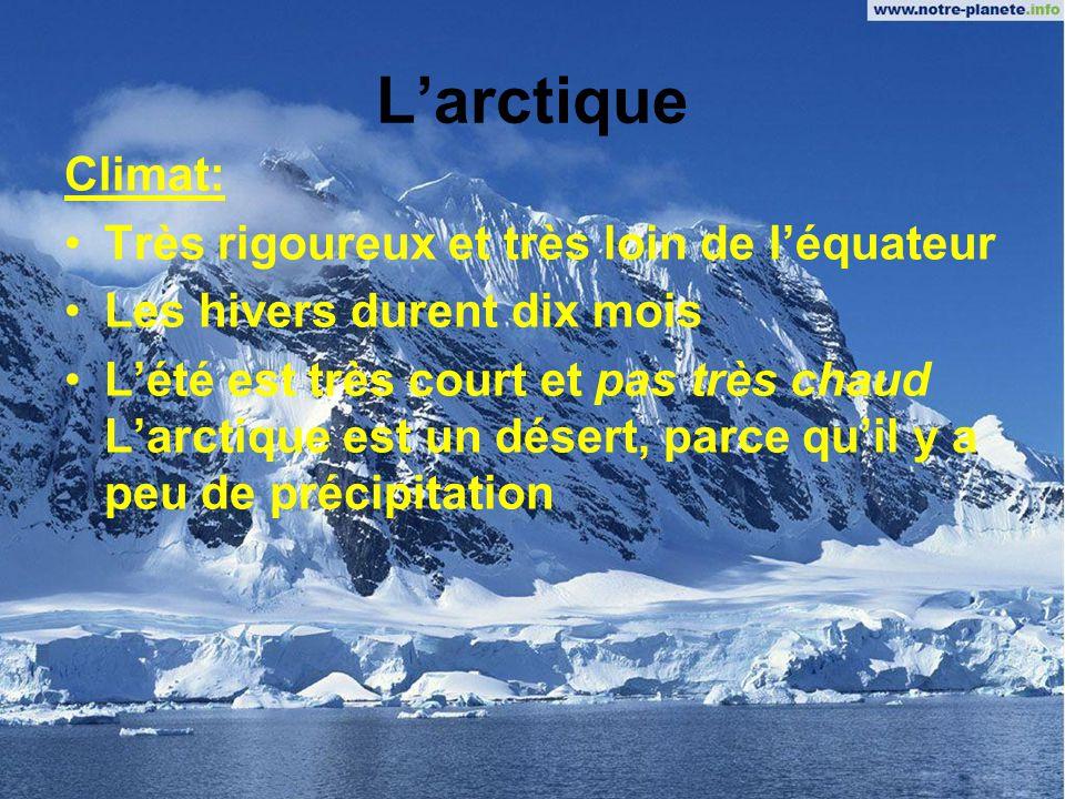 Larctique Topographie: Au nord du Canada, une région de plaines et de montagnes La plus grande partie près de locéan est très plate Les montagnes du Grand Nord ont été formées par des plissements et sont couvertes de glaciers