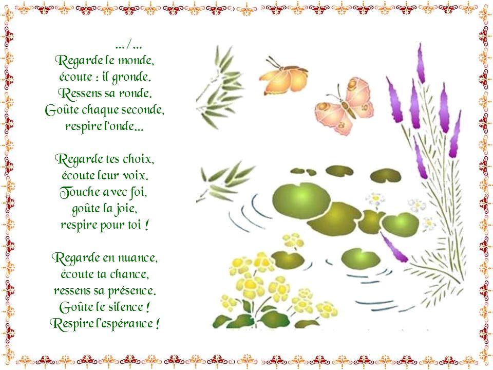 Regarde, écoute, sent, goûte, respire !!! Regarde les fleurs, écoute ton cœur, ressens le bonheur, goûte la fraîcheur ! Respire en profondeur… Regarde