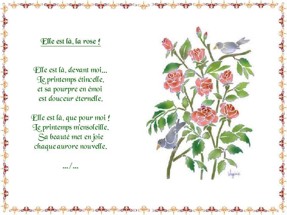 Ces poèmes sont extraits dun livre de poésies pour enfants du même titre, écrit par Marie David C.