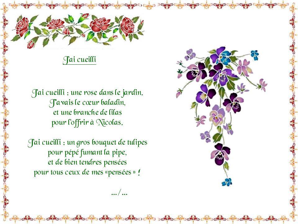 Regarde souvrir les roses Au jardin, une petite fleur me parle sans cesse « bonheur ».