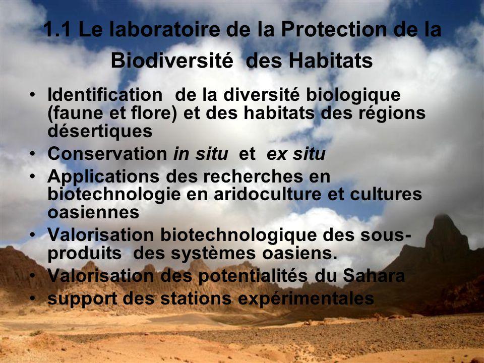1.2 Le laboratoire dagronomie- foresterie Techniques de reforestation pour la lutte contre la désertification Techniques agronomiques dans un environnement aride pour la sécurité alimentaire Recherche et capitalisation en matière de technique de lutte contre la désertification