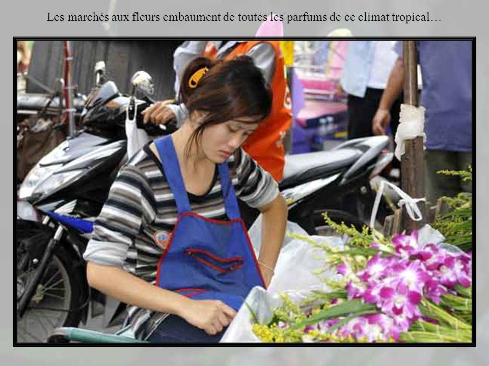 Bref, tout le monde peut trouver son bonheur sur les marchés de Thaïlande…