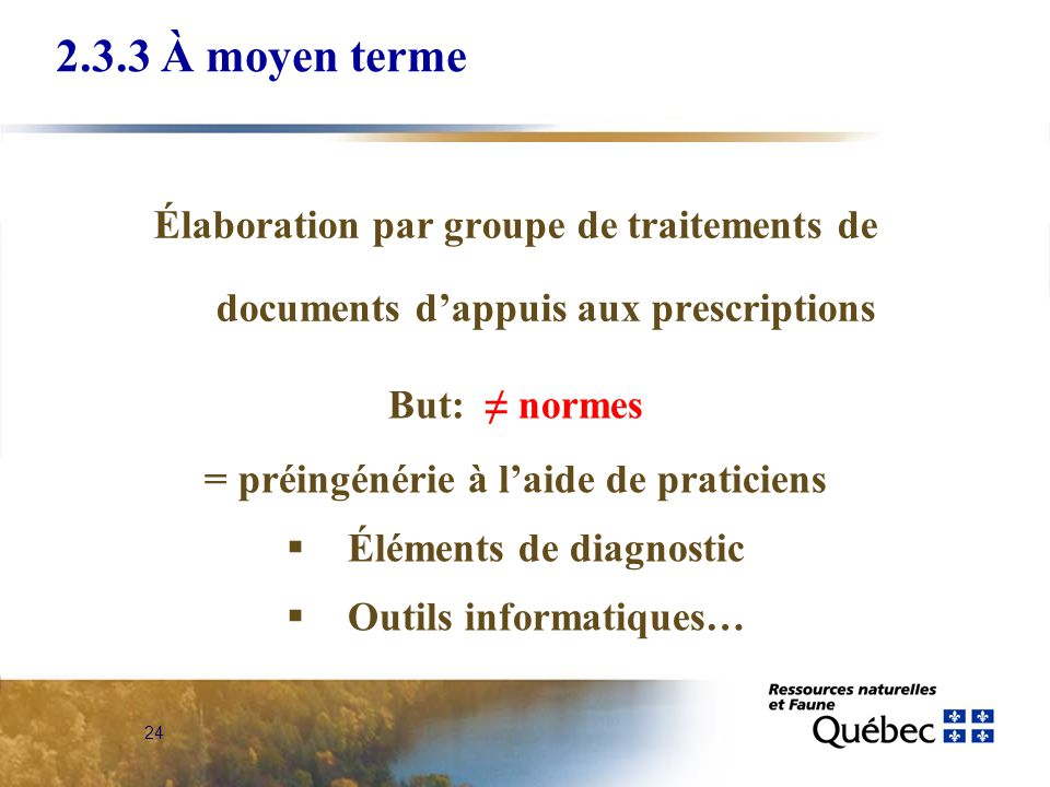 24 2.3.3 À moyen terme Élaboration par groupe de traitements de documents dappuis aux prescriptions But: normes = préingénérie à laide de praticiens Éléments de diagnostic Outils informatiques…