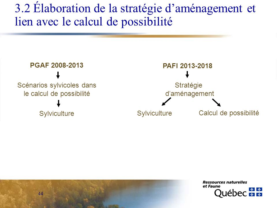 44 PGAF 2008-2013 Scénarios sylvicoles dans le calcul de possibilité Sylviculture PAFI 2013-2018 Stratégie daménagement Calcul de possibilité Sylviculture 3.2 Élaboration de la stratégie daménagement et lien avec le calcul de possibilité