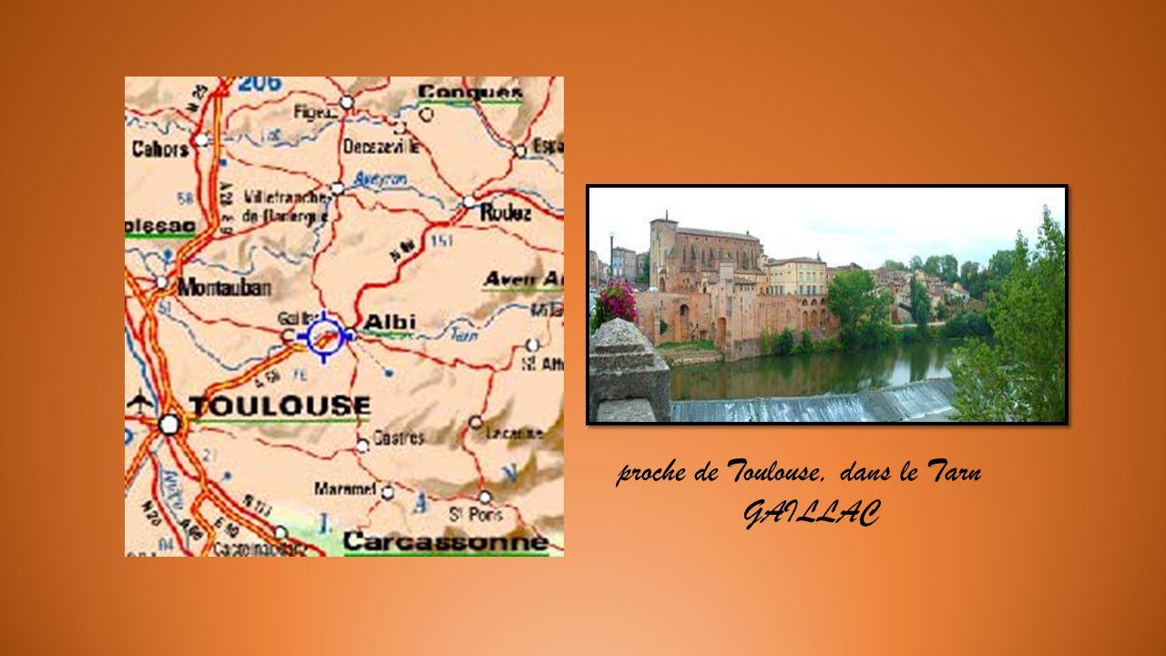 Garlandes de maisons médiévales à Revel. Localité dArtisanat de meubles dart. Un beau détour proche du Canal du Midi.