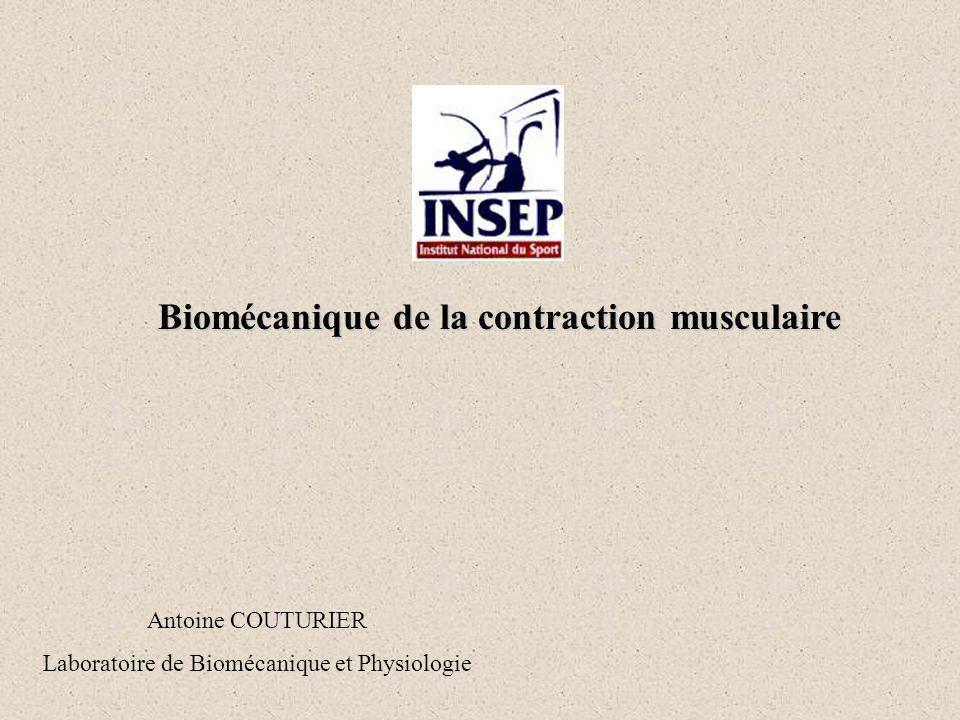 Biomécanique de la contraction musculaire Antoine COUTURIER Laboratoire de Biomécanique et Physiologie