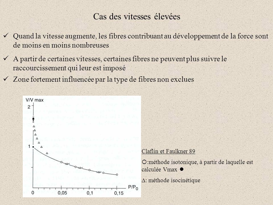 Cas des vitesses élevées Quand la vitesse augmente, les fibres contribuant au développement de la force sont de moins en moins nombreuses A partir de