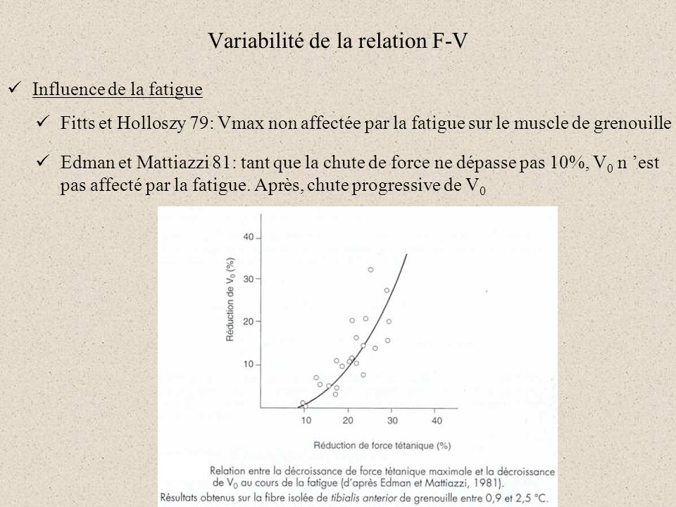 Variabilité de la relation F-V Influence de la fatigue Fitts et Holloszy 79: Vmax non affectée par la fatigue sur le muscle de grenouille Edman et Mat