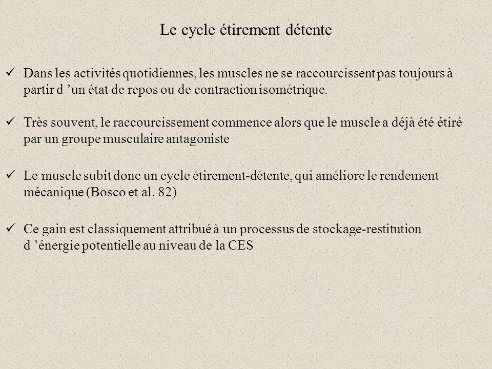 Le cycle étirement détente Dans les activités quotidiennes, les muscles ne se raccourcissent pas toujours à partir d un état de repos ou de contractio