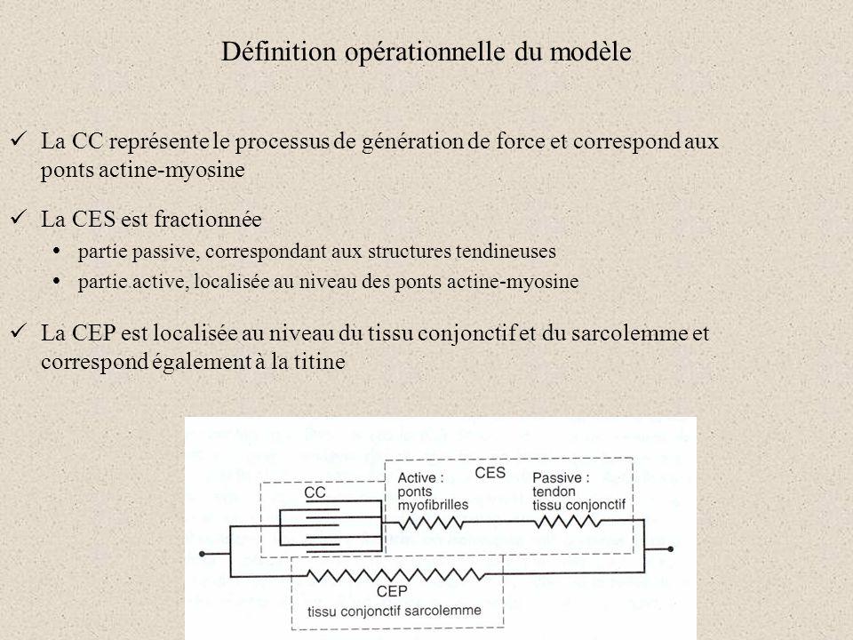 Définition opérationnelle du modèle La CC représente le processus de génération de force et correspond aux ponts actine-myosine La CES est fractionnée
