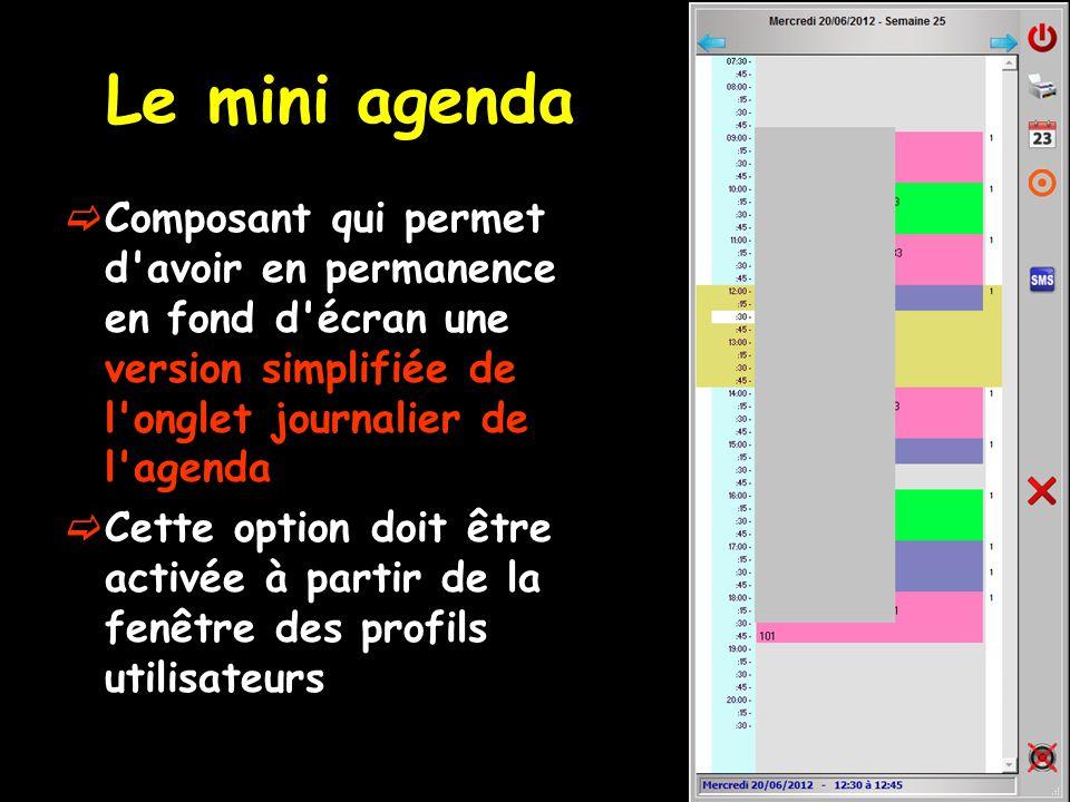Le mini agenda Composant qui permet d'avoir en permanence en fond d'écran une version simplifiée de l'onglet journalier de l'agenda Cette option doit