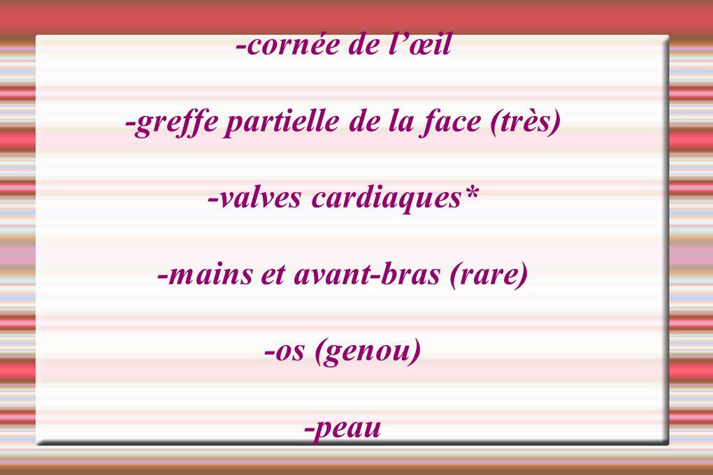 -cornée de lœil -greffe partielle de la face (très) -valves cardiaques* -mains et avant-bras (rare) -os (genou) -peau