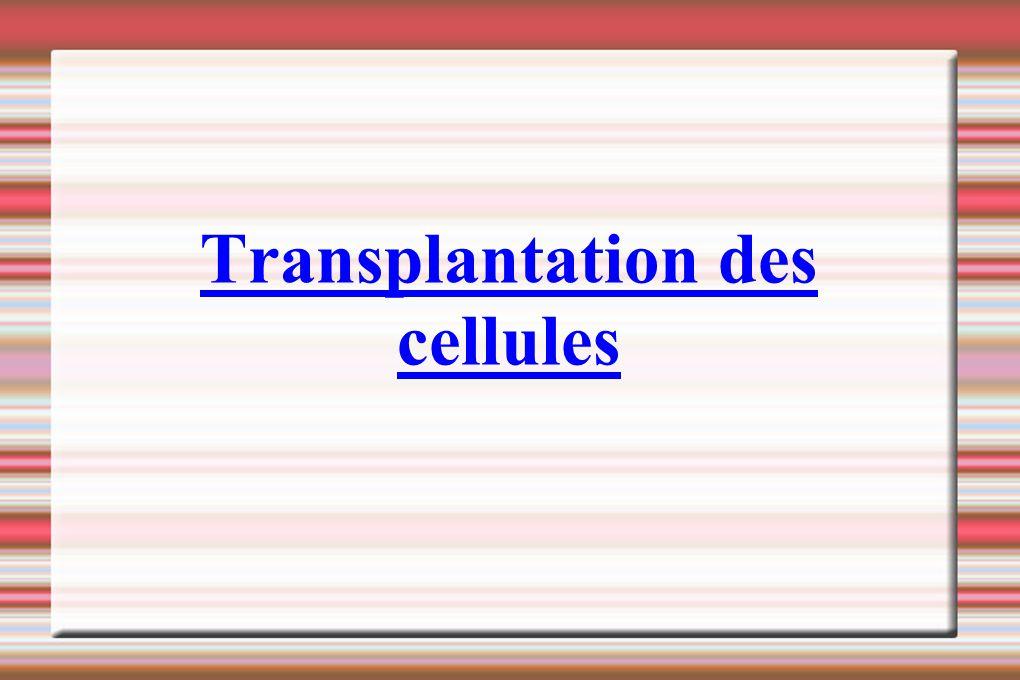 Transplantation des cellules