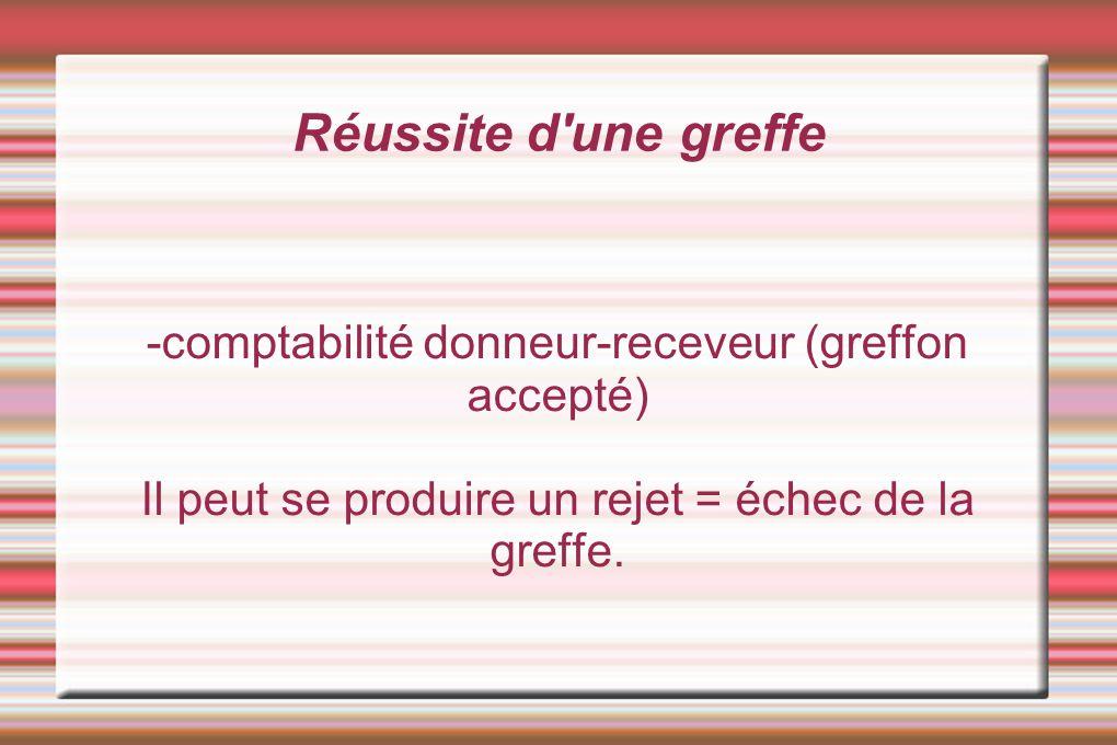 Réussite d'une greffe -comptabilité donneur-receveur (greffon accepté) Il peut se produire un rejet = échec de la greffe.