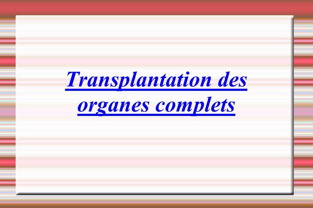-poumons -cœur -rein -foie -pancréas -intestin