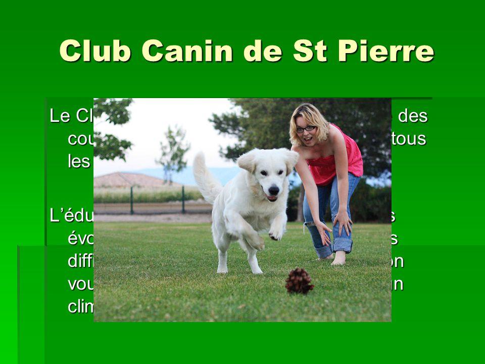 Club Canin de St Pierre Le Club Canin de St Pierre vous propose des cours déducation canine accessible à tous les chiens à partir de 2 mois. Léducatio