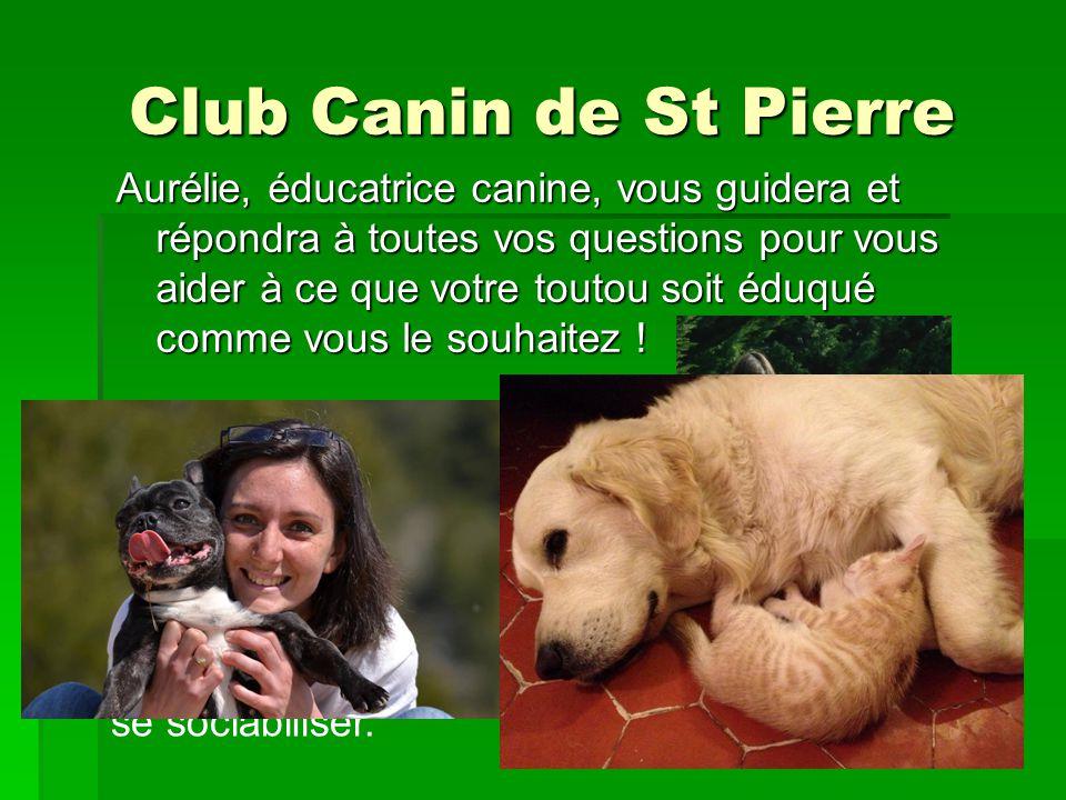Club Canin de St Pierre Au cours de lannée, des cours à thème seront proposés ponctuellement afin de vous faire découvrir tout ce quun toutou peut faire avec son maître: Une ouverture vers dautres activités canines !!.