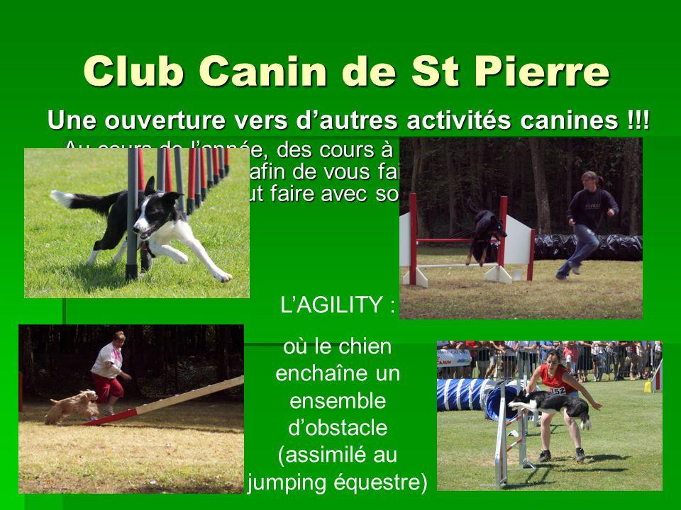 Club Canin de St Pierre Au cours de lannée, des cours à thème seront proposés ponctuellement afin de vous faire découvrir tout ce quun toutou peut fai