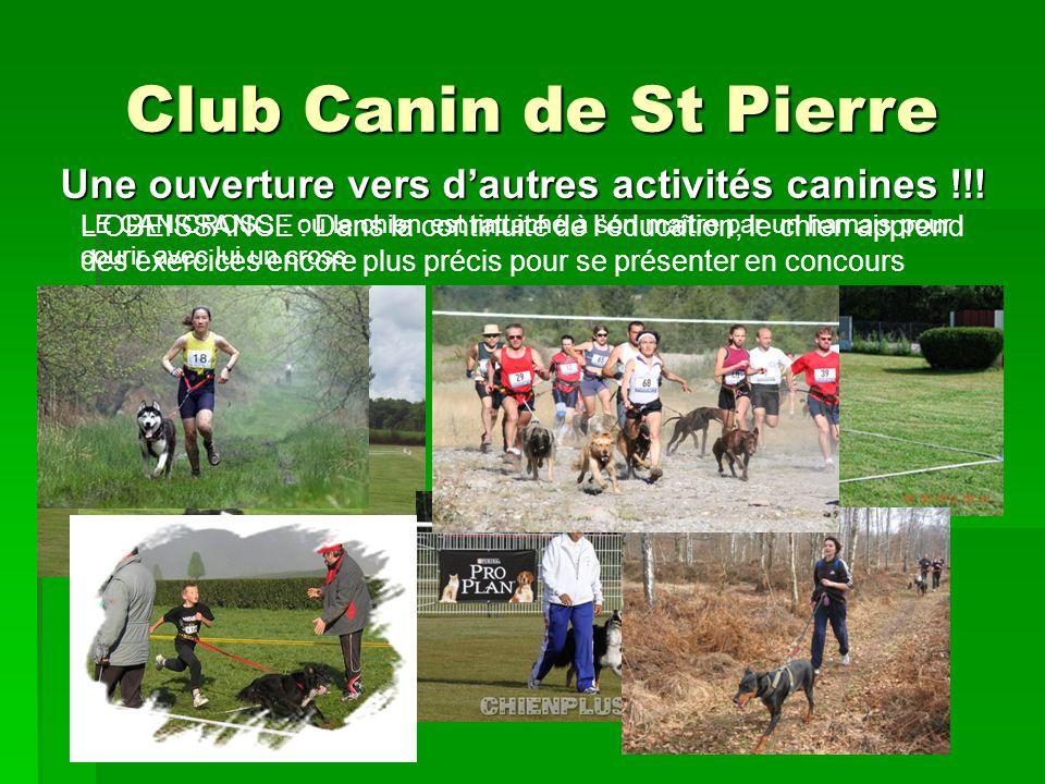 Club Canin de St Pierre LOBEISSANCE : Dans la continuité de léducation, le chien apprend des exercices encore plus précis pour se présenter en concour