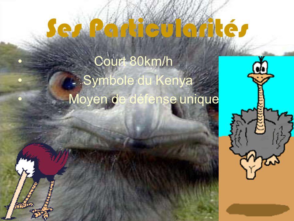 Ses Particularités Court 80km/h Symbole du Kenya Moyen de défense unique