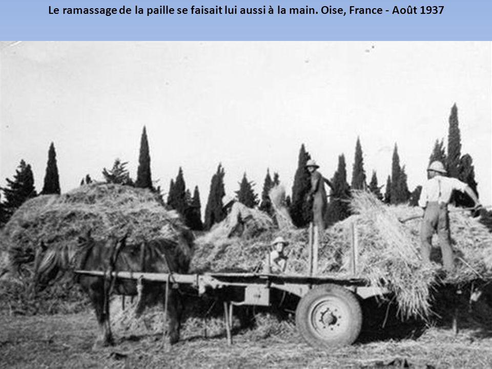 Juste après les moissons, un labour de la terre est nécessaire avant de semer les graines pour la récolte de l'année suivante. Aveyron, France - Août