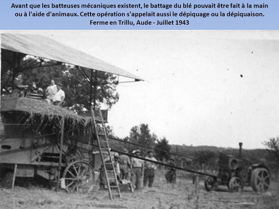 Hermonville, Marne - Juillet 1942
