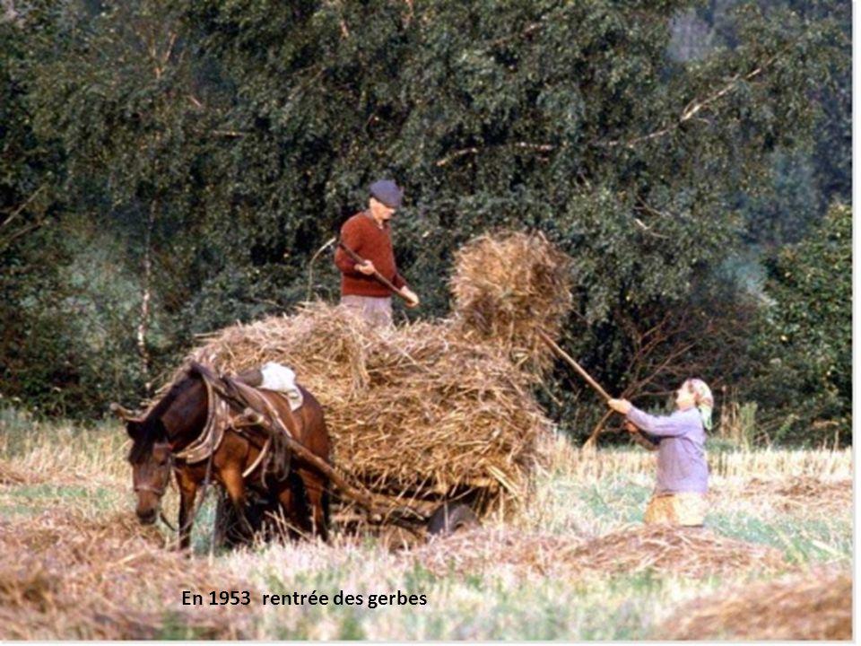 En 1953 Binoter avec un cheval