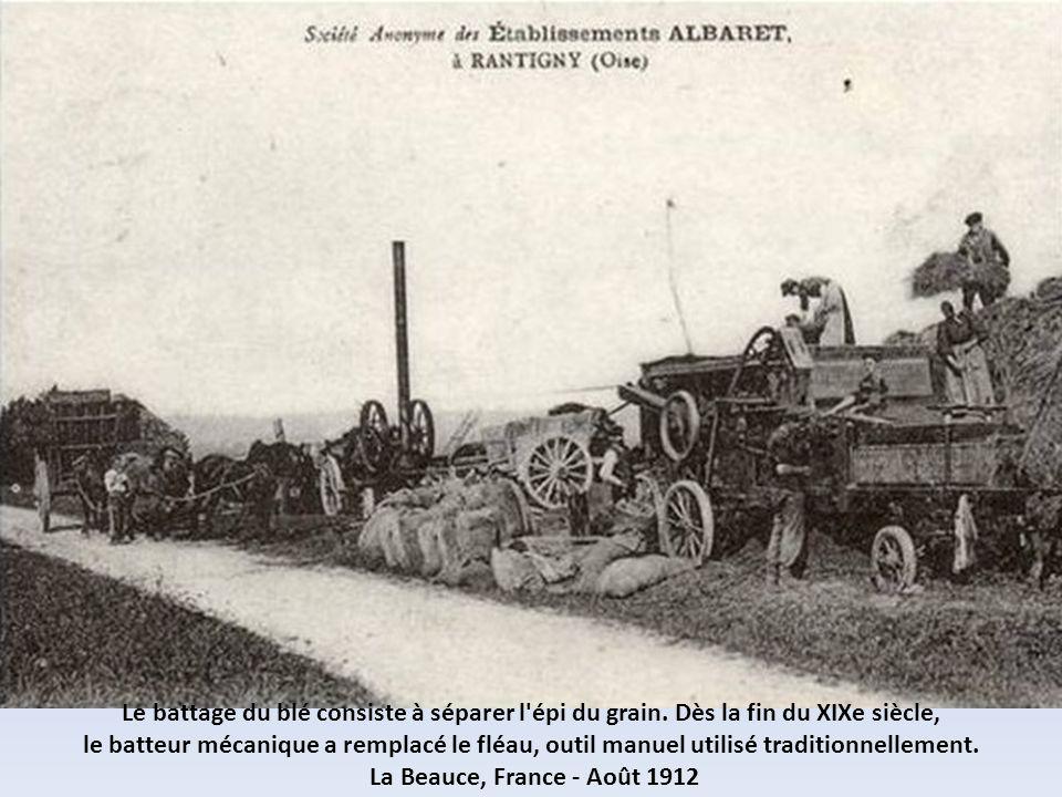 Autrefois, la moisson se faisait manuellement, à l'aide de faux et de faucilles. La Beauce, France - Août 1912