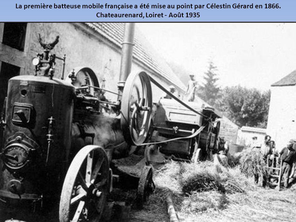 En période de moissons, une main d'œuvre saisonnière était nécessaire pour récolter les céréales. Jayat, Montrevel, Ain - Juillet 1930