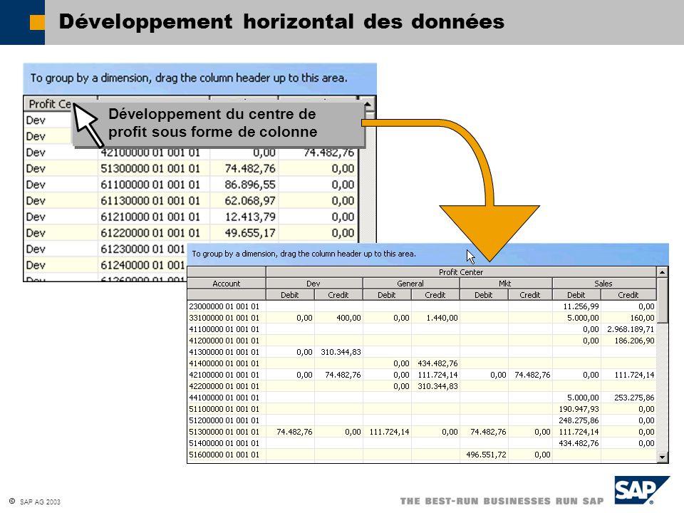 SAP AG 2003 Développement horizontal des données Développement du centre de profit sous forme de colonne