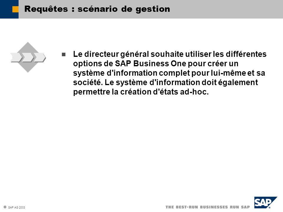 SAP AG 2003 Le directeur général souhaite utiliser les différentes options de SAP Business One pour créer un système d'information complet pour lui-mê