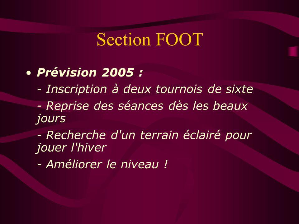 Section FOOT Prévision 2005 : - Inscription à deux tournois de sixte - Reprise des séances dès les beaux jours - Recherche d'un terrain éclairé pour j