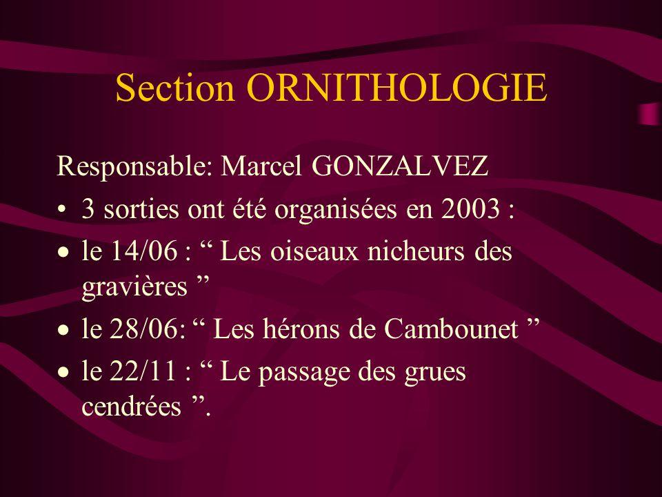 Section ORNITHOLOGIE Responsable: Marcel GONZALVEZ 3 sorties ont été organisées en 2003 : le 14/06 : Les oiseaux nicheurs des gravières le 28/06: Les