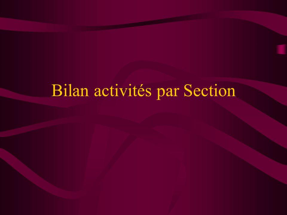 Section Arts Plastiques Responsable: Christine CARMIER Activité effective 2003: aucune Activités proposées 2004: Stages Céramique (Raku, Engobés, Emaillage) avec MJC Roguet-St Cyprien
