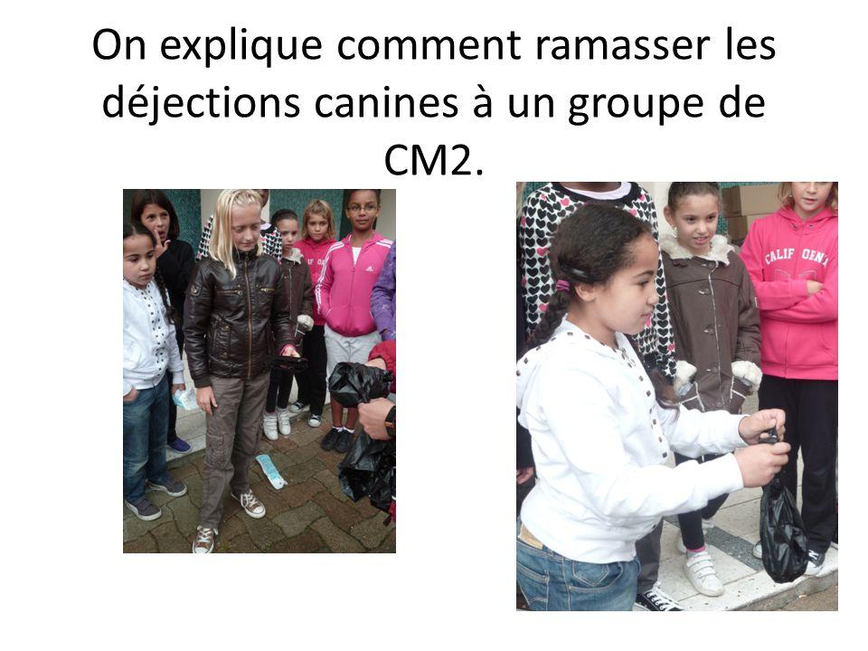 On explique comment ramasser les déjections canines à un groupe de CM2.