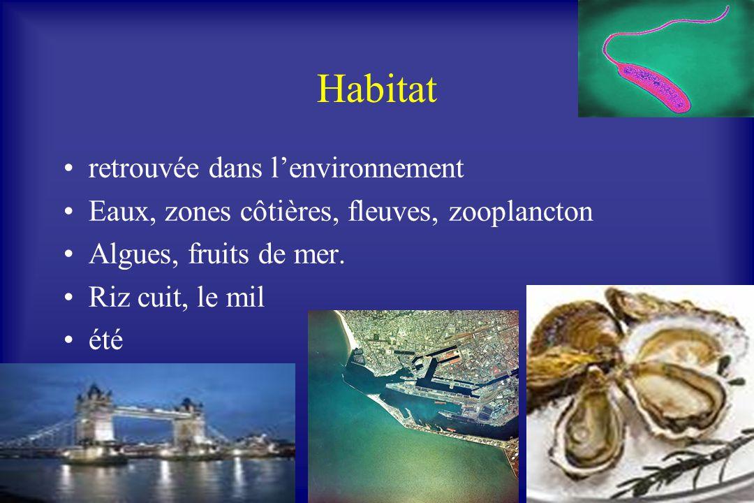 Habitat retrouvée dans lenvironnement Eaux, zones côtières, fleuves, zooplancton Algues, fruits de mer. Riz cuit, le mil été
