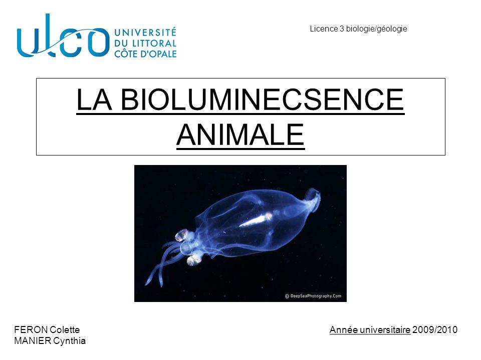 LA BIOLUMINECSENCE ANIMALE FERON Colette Année universitaire 2009/2010 MANIER Cynthia Licence 3 biologie/géologie