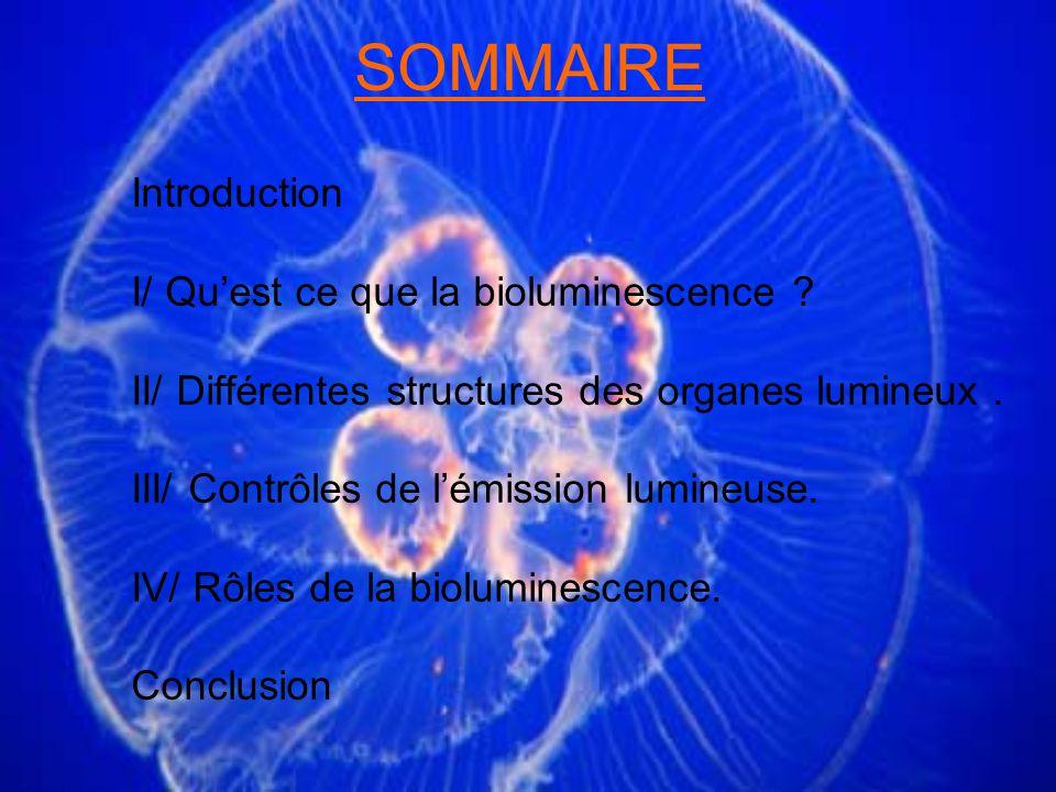 IV- Rôles de la bioluminescence 2) Signes de reconnaissance spécifique : - Reconnaissance entre espèce (jeunes et adultes) - Parades nuptiales