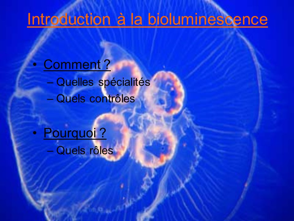 Introduction à la bioluminescence Comment .–Quelles spécialités –Quels contrôles Pourquoi .