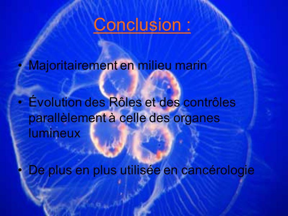 Conclusion : Majoritairement en milieu marin Évolution des Rôles et des contrôles parallèlement à celle des organes lumineux De plus en plus utilisée en cancérologie
