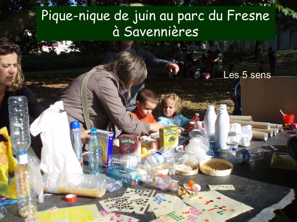 17 Les 5 sens Pique-nique de juin au parc du Fresne à Savennières