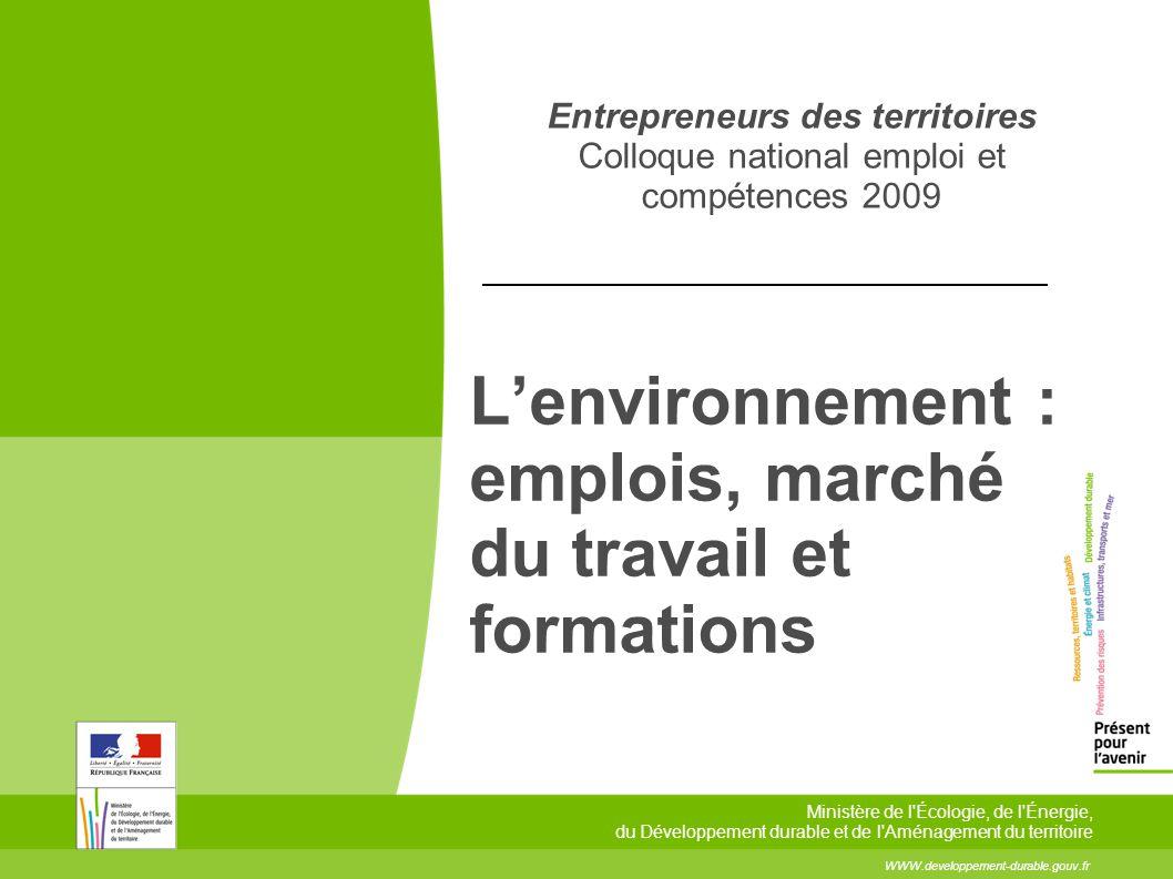 2 2 Commissariat général au développement durable – Service de lobservation et des statistiques Entrepreneurs des territoires - Colloque national emploi et compétences 5 février 2009 Lemploi environnemental en 2006 375 900 emplois environnementaux en France en 2006.