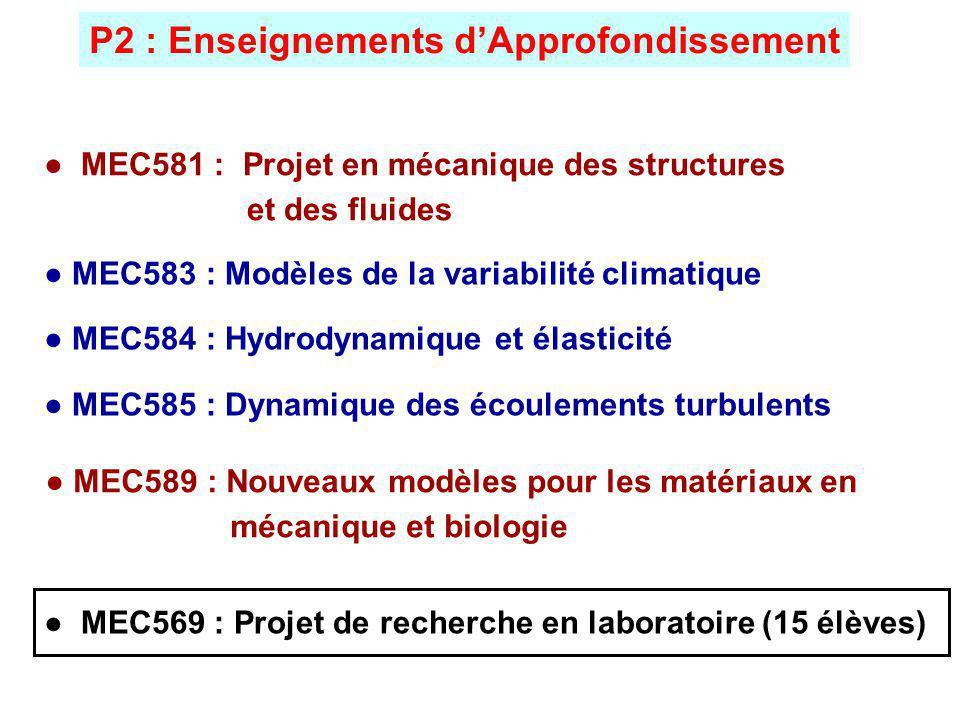 MEC589 : Nouveaux modèles pour les matériaux en mécanique et biologie P2 : Enseignements dApprofondissement MEC583 : Modèles de la variabilité climatique MEC584 : Hydrodynamique et élasticité MEC585 : Dynamique des écoulements turbulents MEC581 : Projet en mécanique des structures et des fluides MEC569 : Projet de recherche en laboratoire (15 élèves)