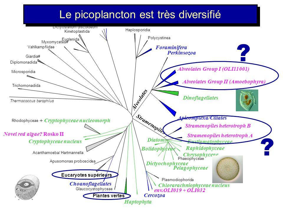 LADN peut être analysé A partir des cultures A partir du milieu naturel