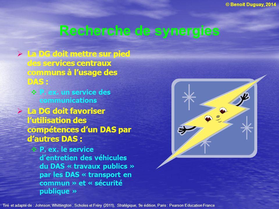 © Benoit Duguay, 2014 Recherche de synergies La DG doit mettre sur pied des services centraux communs à lusage des DAS : P. ex. un service des communi