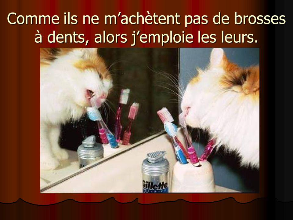 Comme ils ne machètent pas de brosses à dents, alors jemploie les leurs.