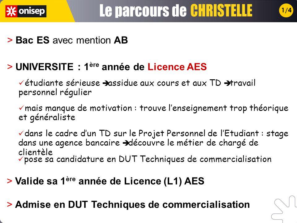 1/4 > UNIVERSITE : 1 ère année de Licence AES > Valide sa 1 ère année de Licence (L1) AES étudiante sérieuse assidue aux cours et aux TD travail perso